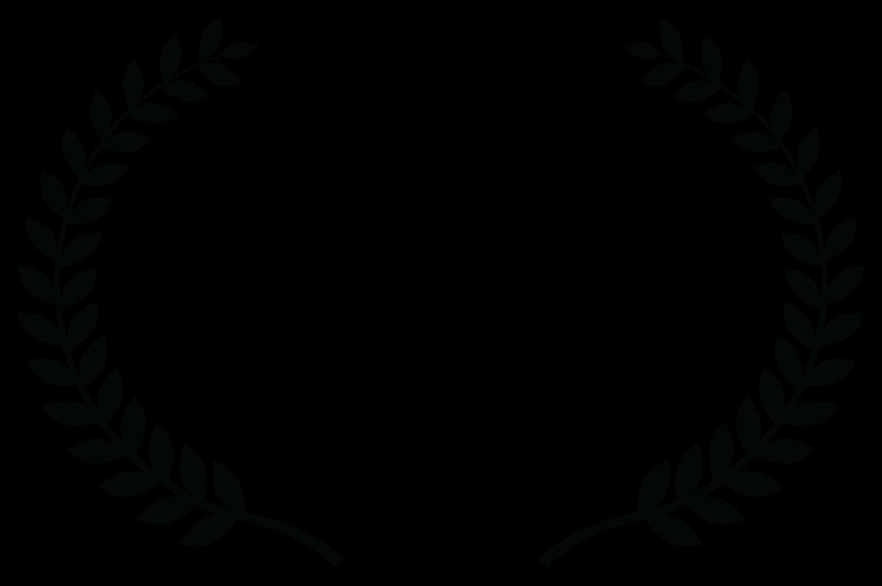 Dark Comedy Film Festival     Silver -   WINNER  BEST FEATURE - 2021